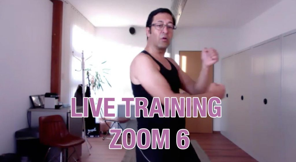 Zoom Live Training Nr. 6