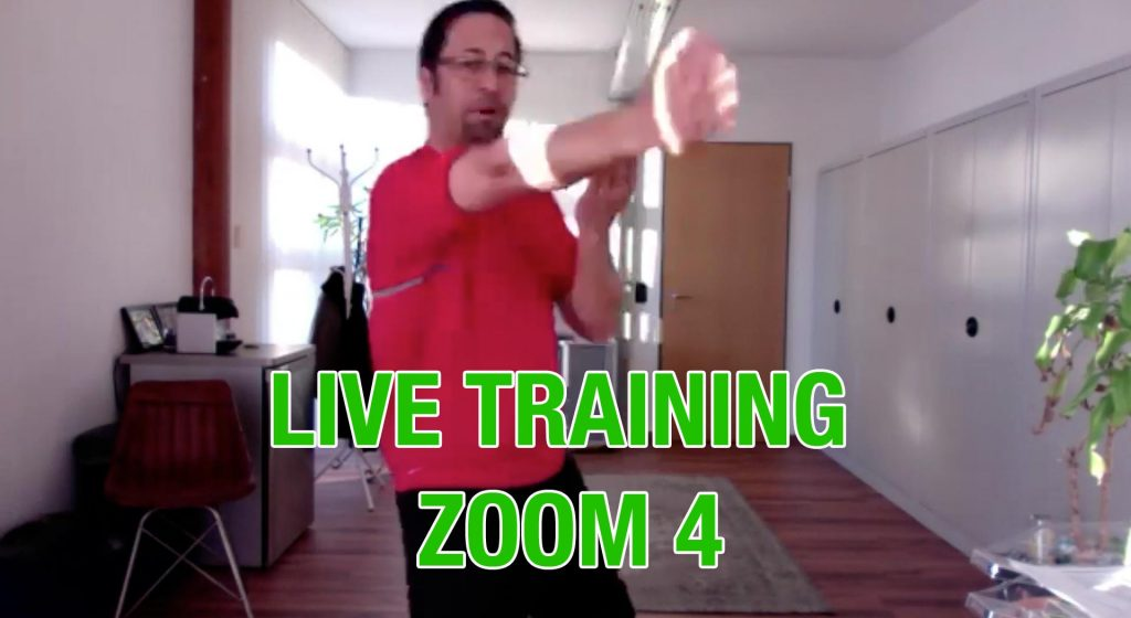 Zoom Live Training Nr. 4