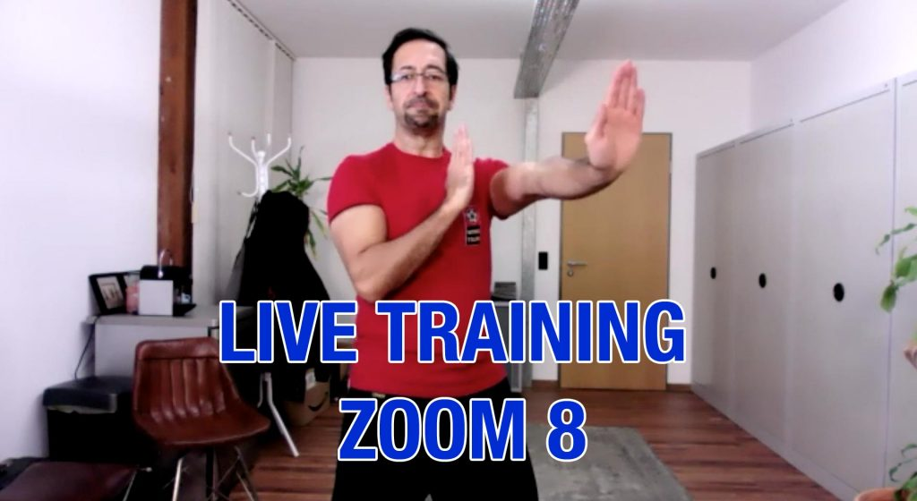Zoom Live Training Nr. 8