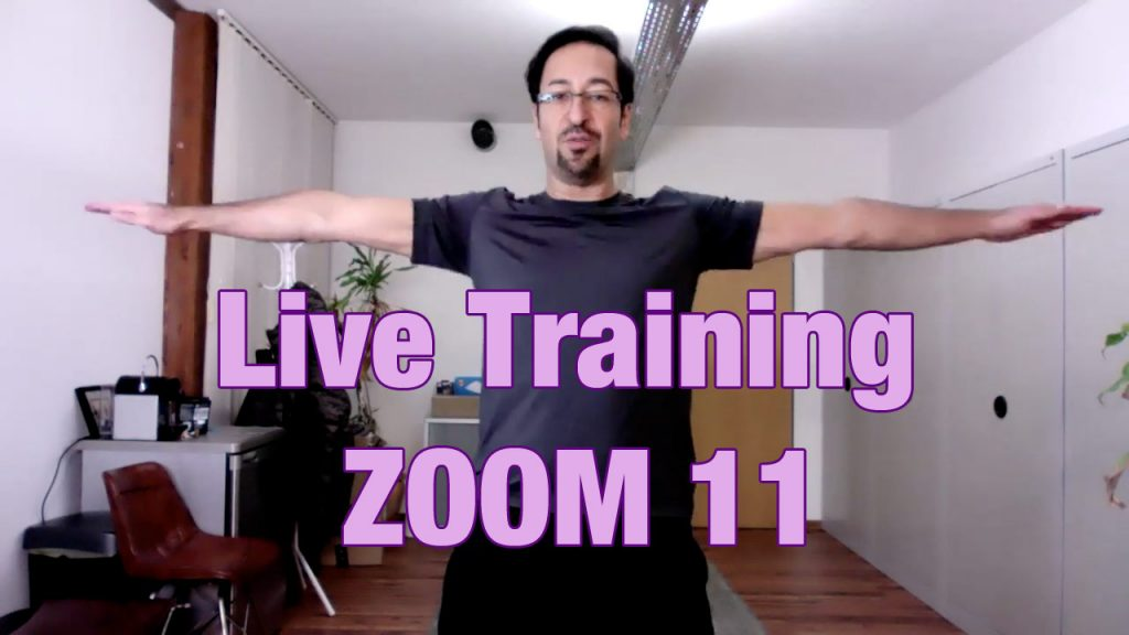Zoom Live Training Nr. 11